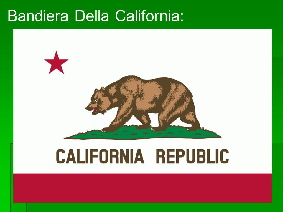 Bandiera Della California: