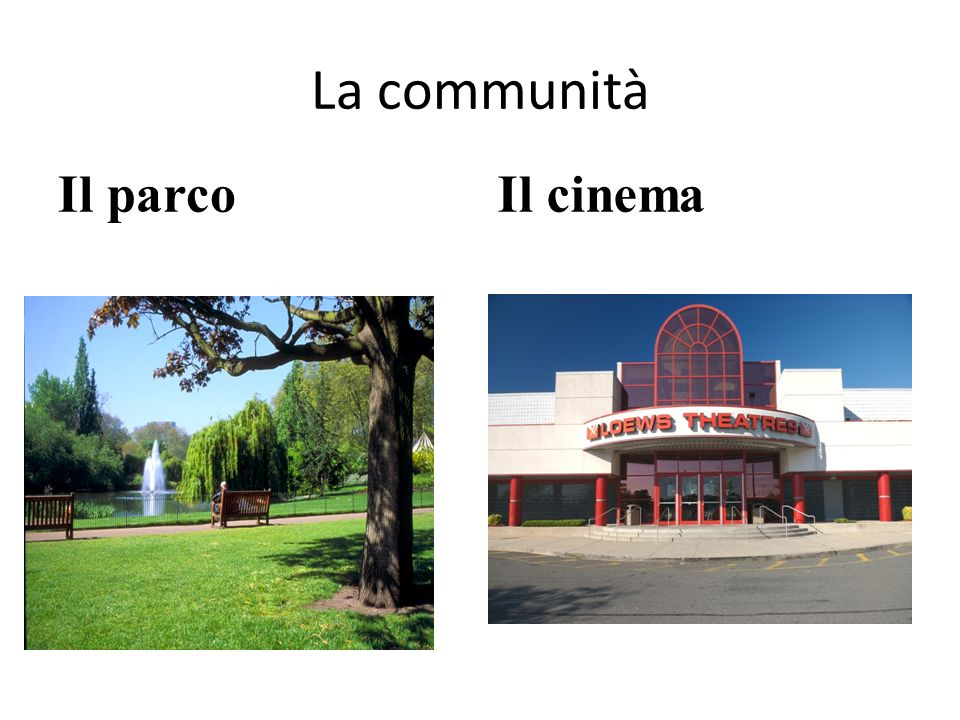 La communità Il parco Il cinema