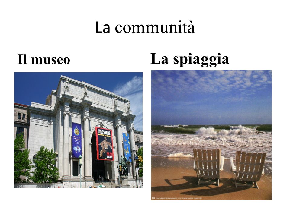 La communità Il museo La spiaggia