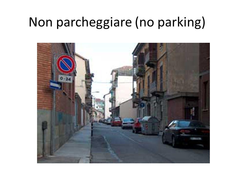 Non parcheggiare (no parking)