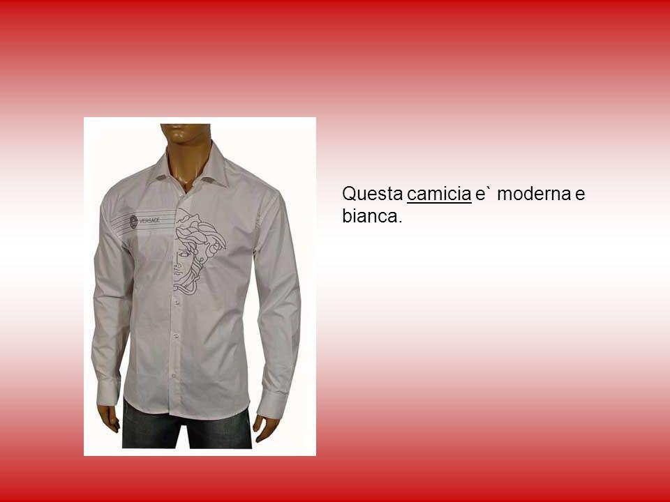 Questa camicia e` moderna e bianca.