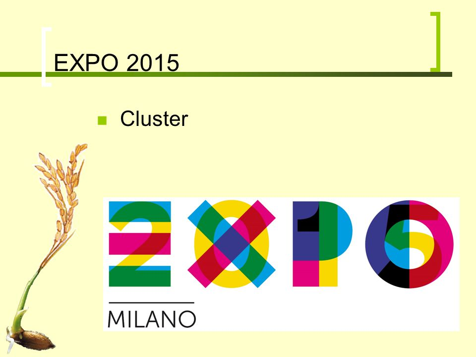 EXPO 2015 Cluster