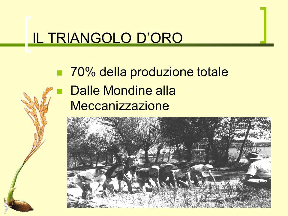 IL TRIANGOLO D'ORO 70% della produzione totale