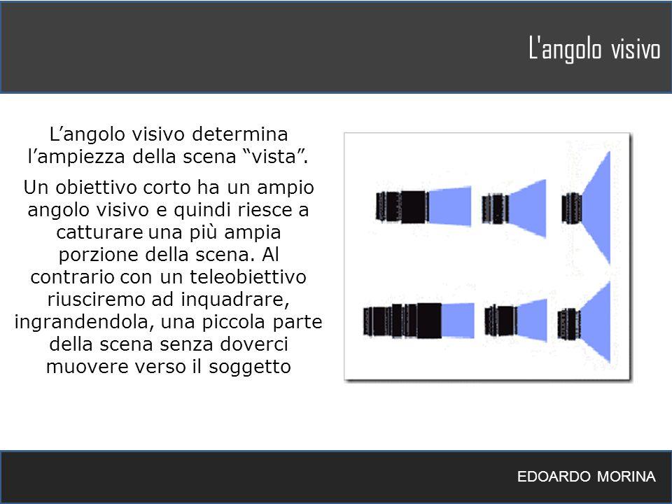 L'angolo visivo determina l'ampiezza della scena vista .