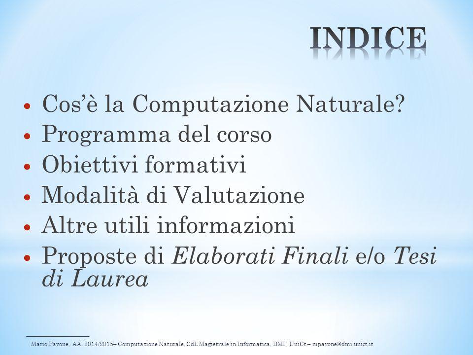 INDICE Cos'è la Computazione Naturale Programma del corso
