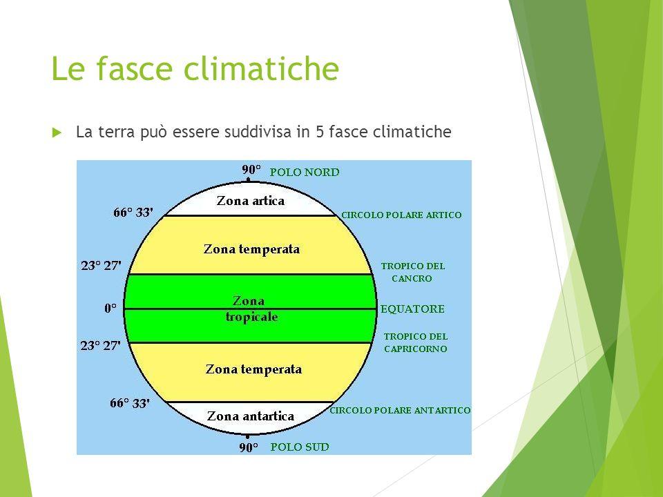 Le fasce climatiche La terra può essere suddivisa in 5 fasce climatiche