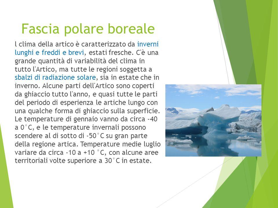 Fascia polare boreale