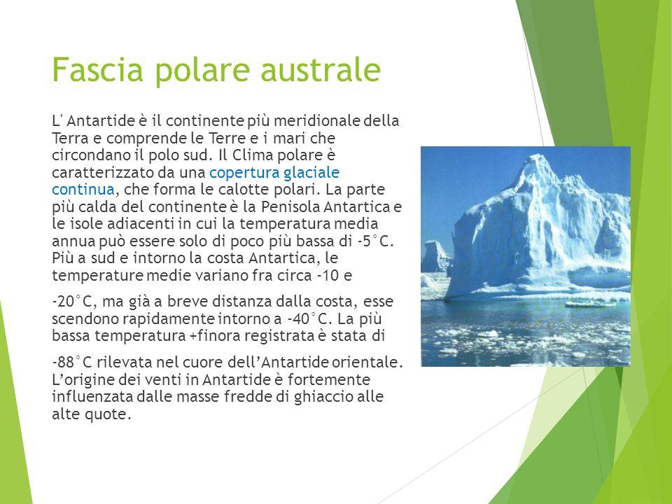 Fascia polare australe