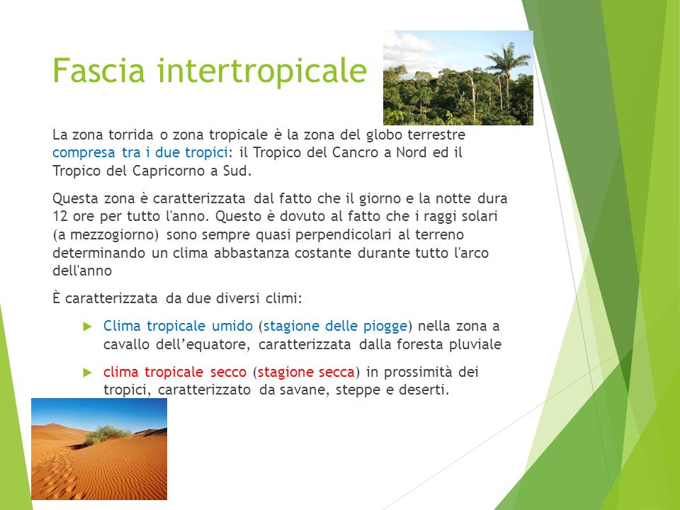 Fascia intertropicale