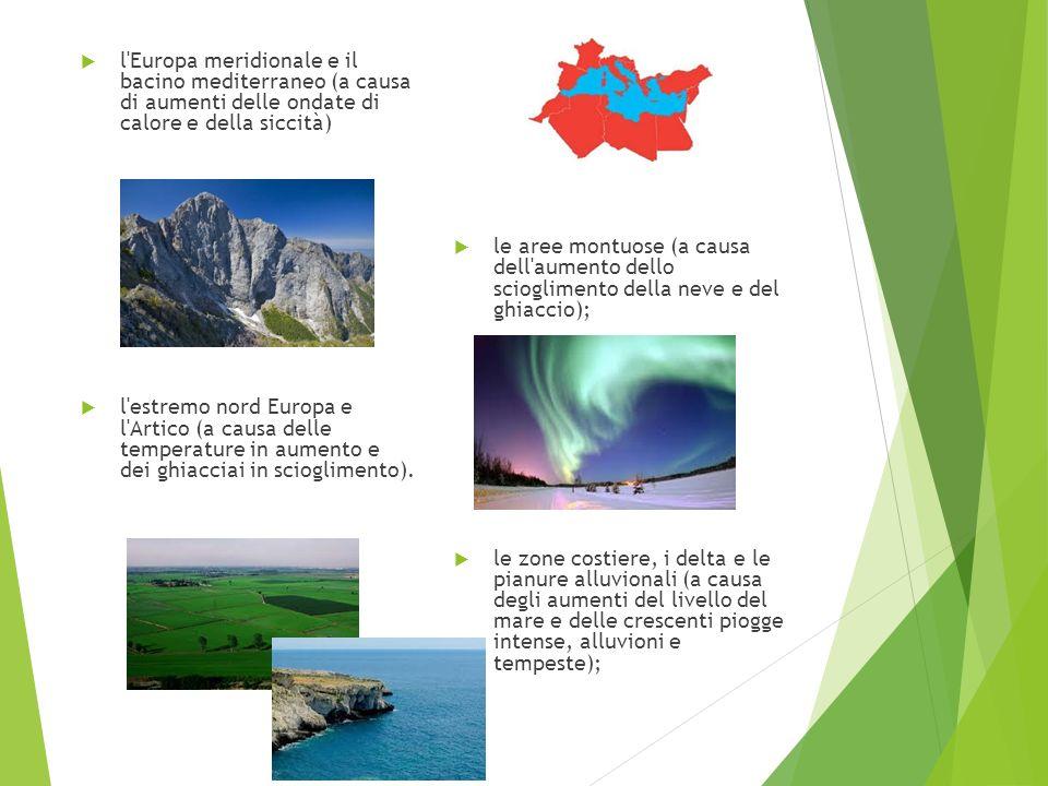 l Europa meridionale e il bacino mediterraneo (a causa di aumenti delle ondate di calore e della siccità)