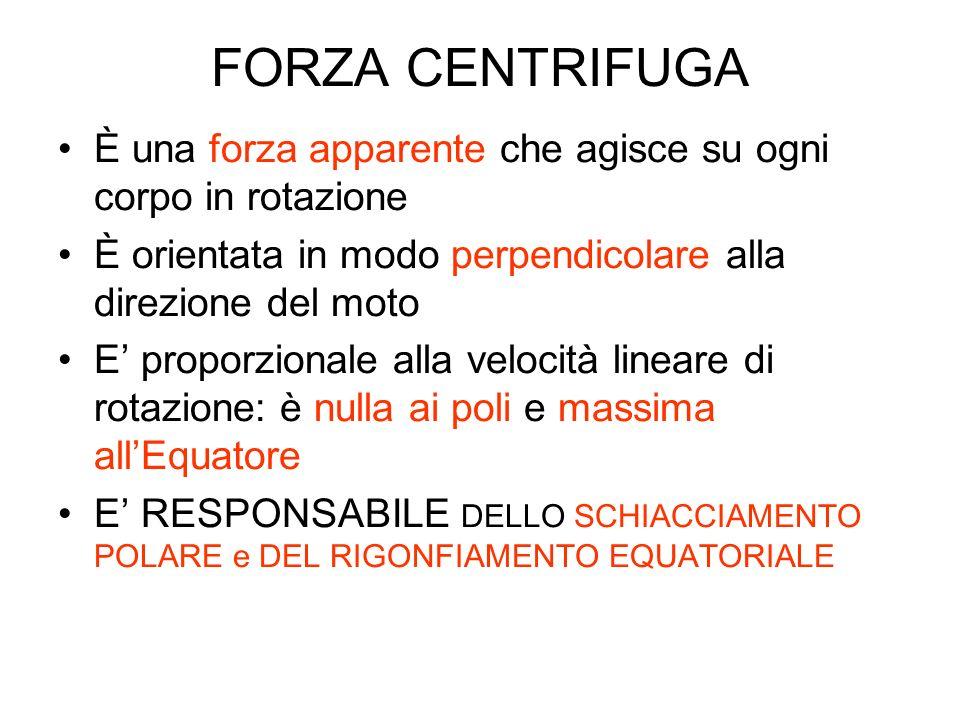FORZA CENTRIFUGA È una forza apparente che agisce su ogni corpo in rotazione. È orientata in modo perpendicolare alla direzione del moto.