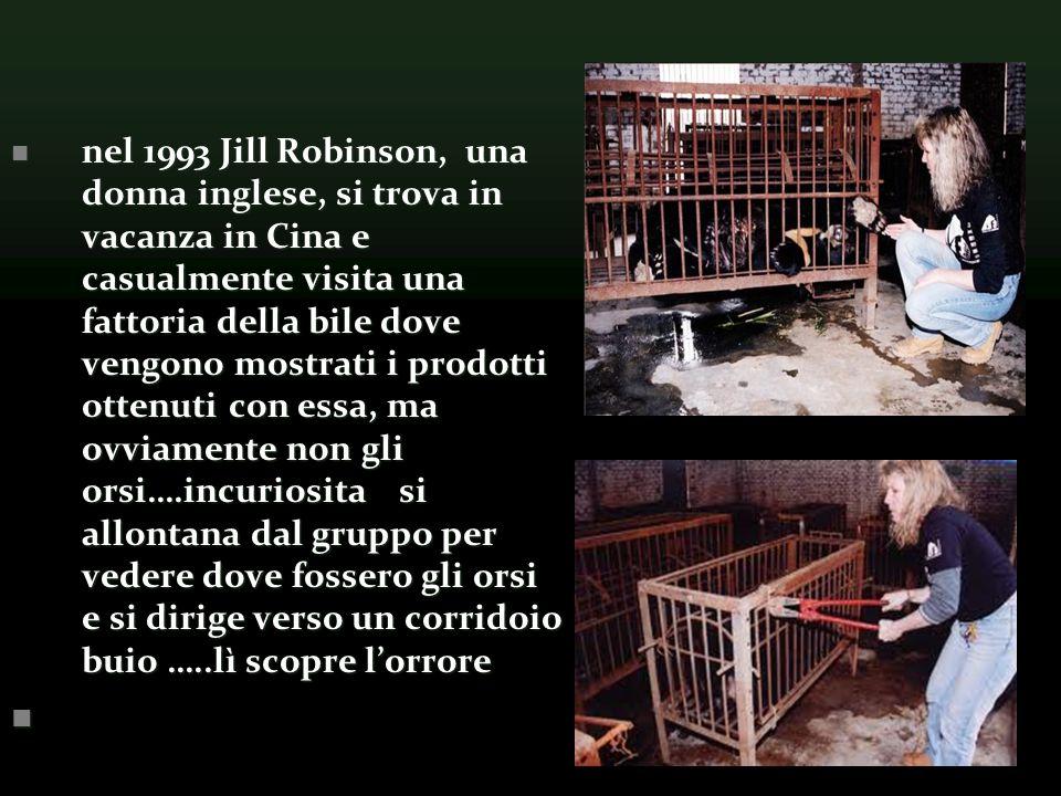 nel 1993 Jill Robinson, una donna inglese, si trova in vacanza in Cina e casualmente visita una fattoria della bile dove vengono mostrati i prodotti ottenuti con essa, ma ovviamente non gli orsi….incuriosita si allontana dal gruppo per vedere dove fossero gli orsi e si dirige verso un corridoio buio …..lì scopre l'orrore