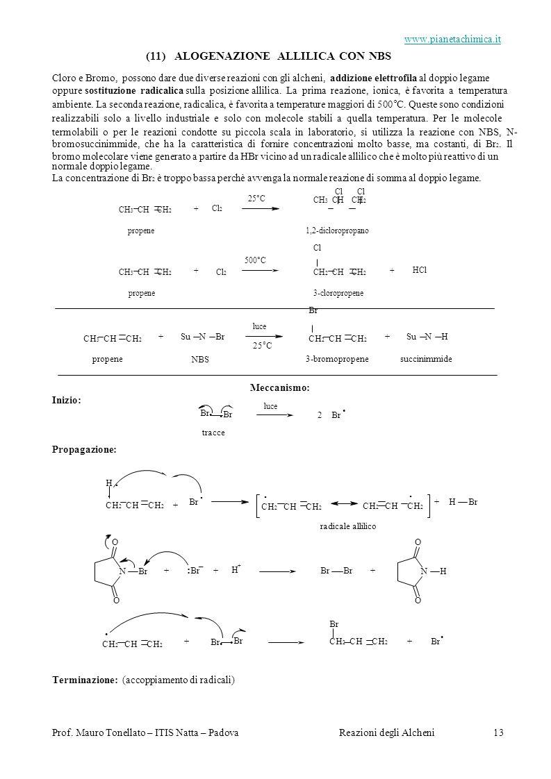 (11) ALOGENAZIONE ALLILICA CON NBS