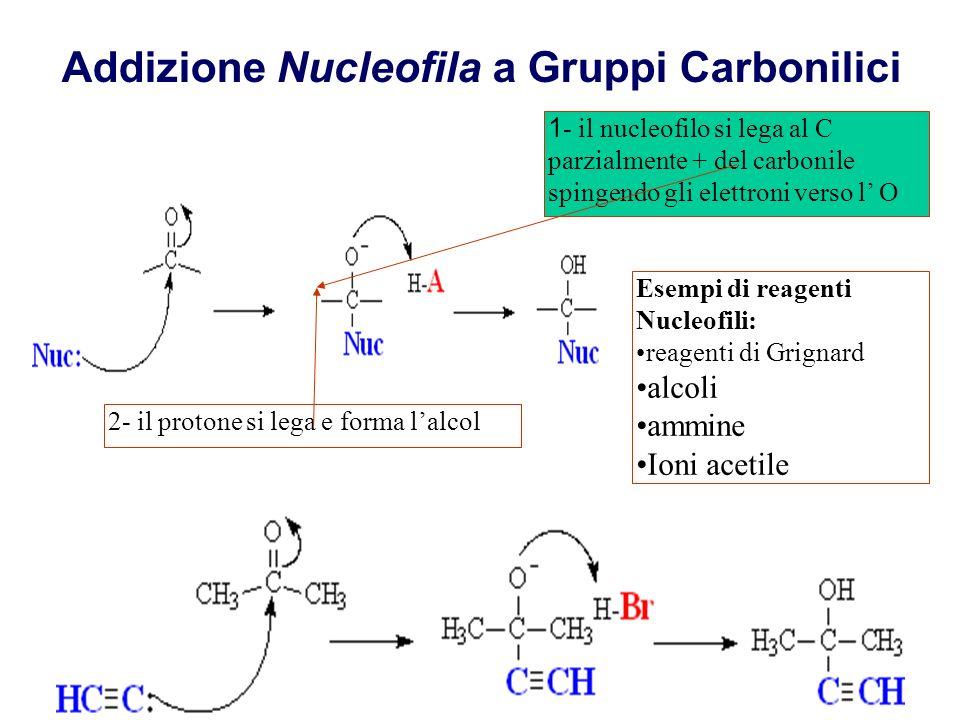 Addizione Nucleofila a Gruppi Carbonilici
