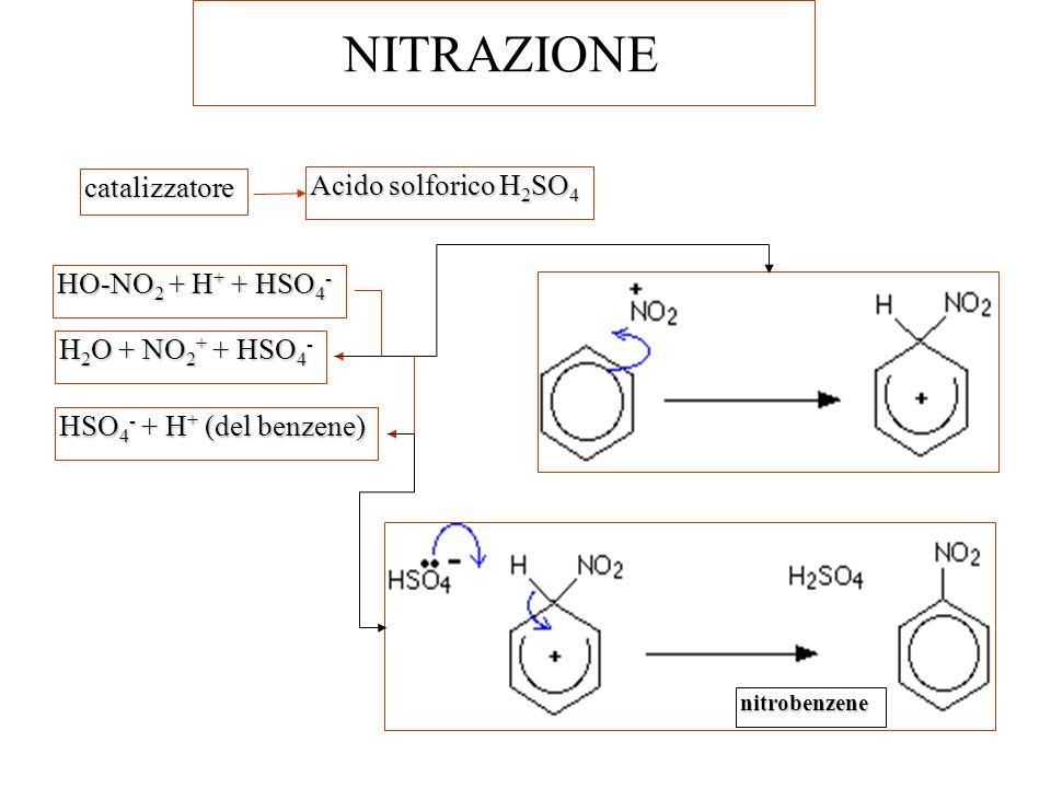 NITRAZIONE catalizzatore Acido solforico H2SO4 HO-NO2 + H+ + HSO4-
