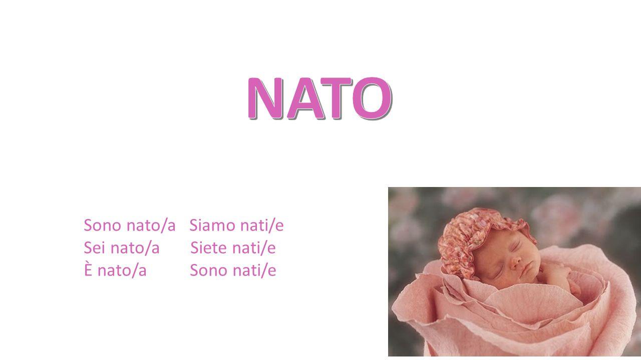NATO Sono nato/a Siamo nati/e Sei nato/a Siete nati/e
