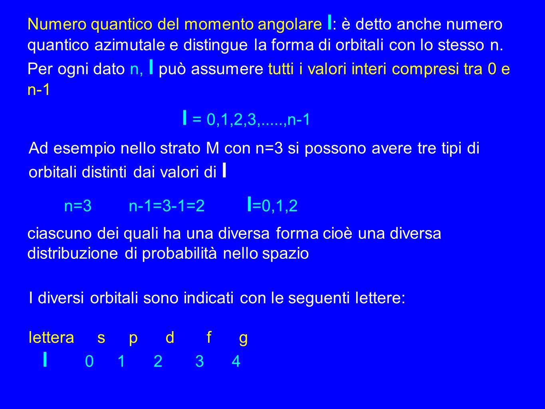 Numero quantico del momento angolare l: è detto anche numero quantico azimutale e distingue la forma di orbitali con lo stesso n.