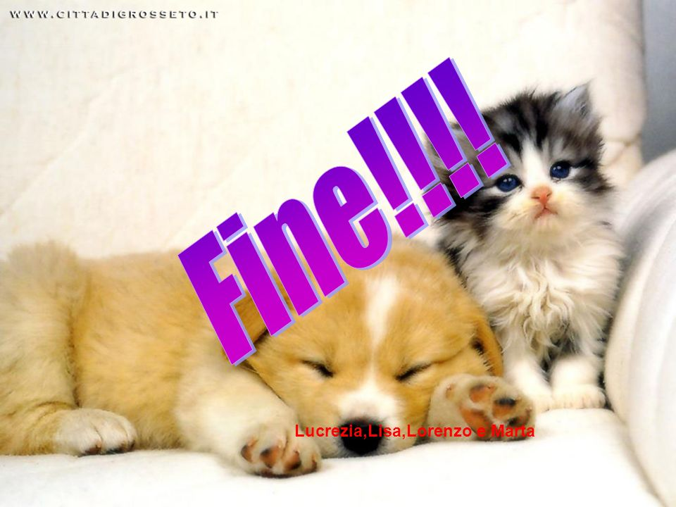 Fine!!!! Lucrezia,Lisa,Lorenzo e Marta