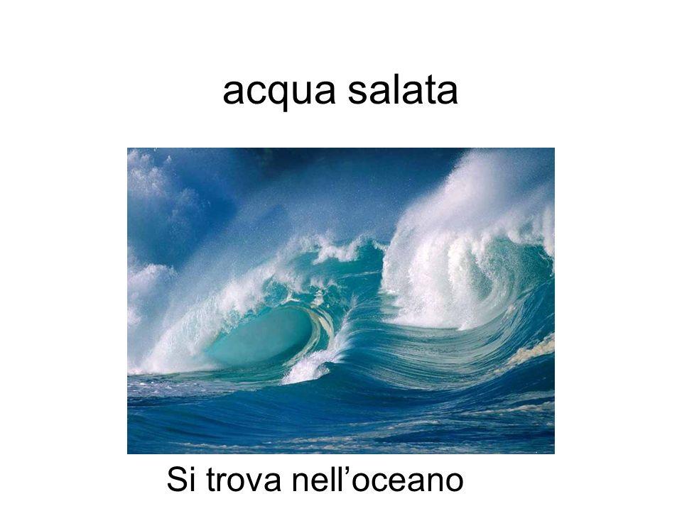 acqua salata Si trova nell'oceano