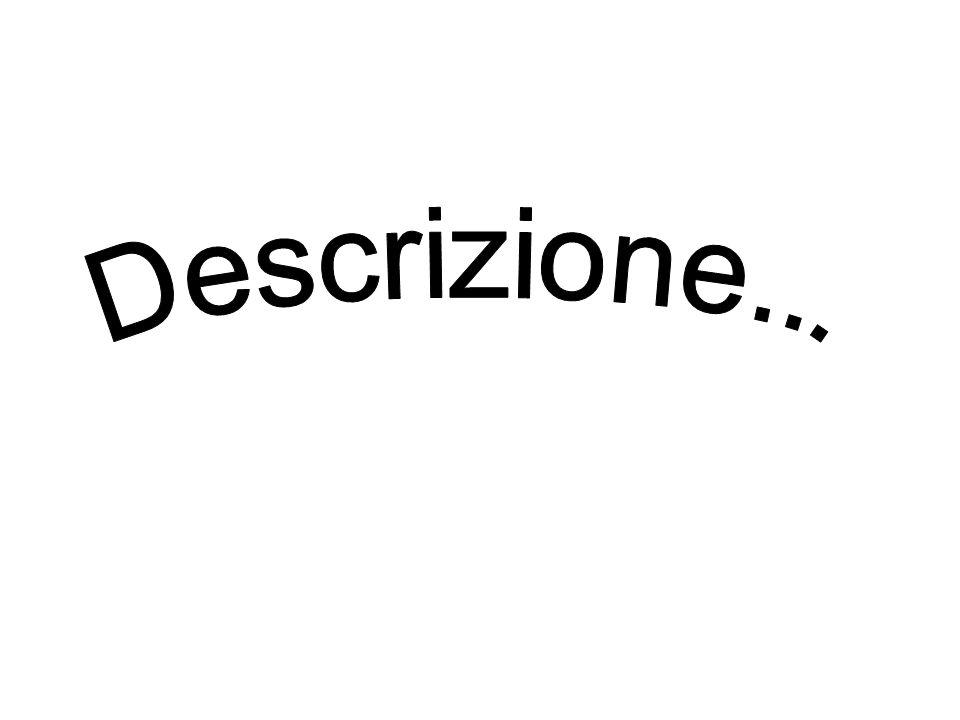 Descrizione...