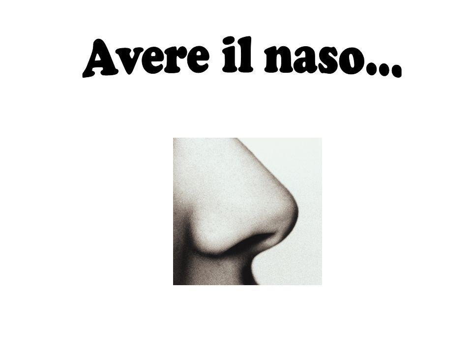 Avere il naso...