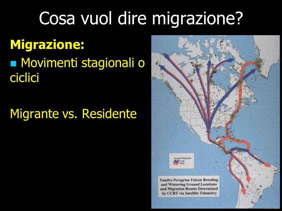 Cosa vuol dire migrazione