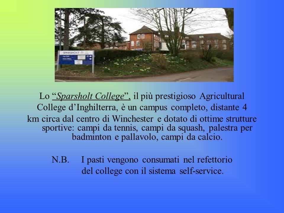 Lo Sparsholt College , il più prestigioso Agricultural