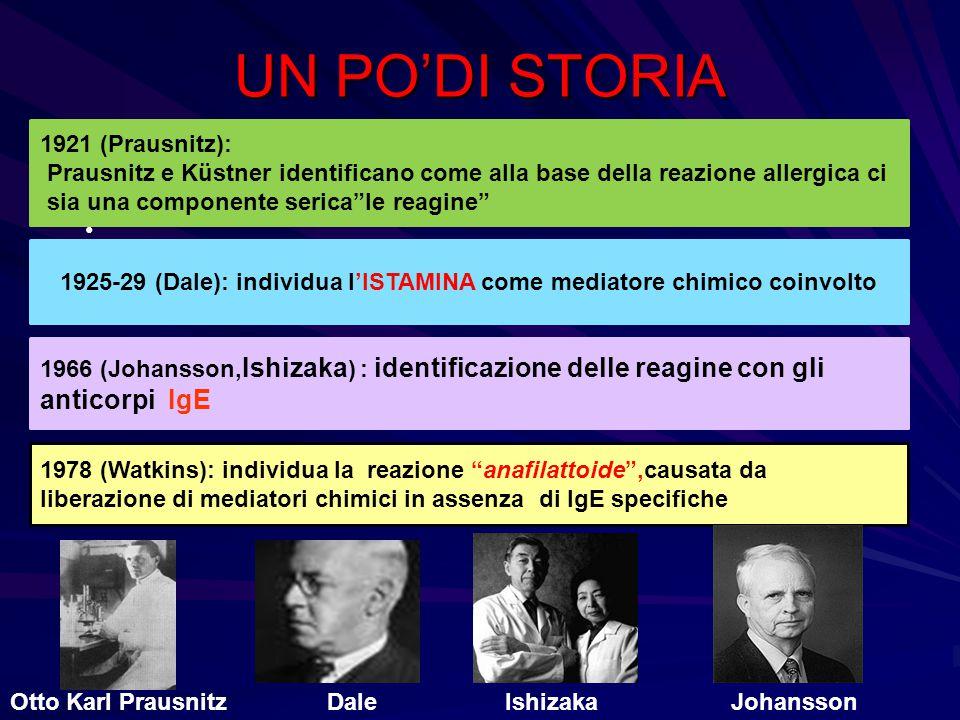 1925-29 (Dale): individua l'ISTAMINA come mediatore chimico coinvolto