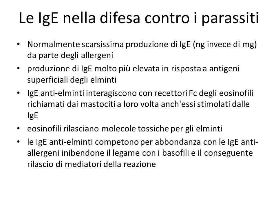 Le IgE nella difesa contro i parassiti