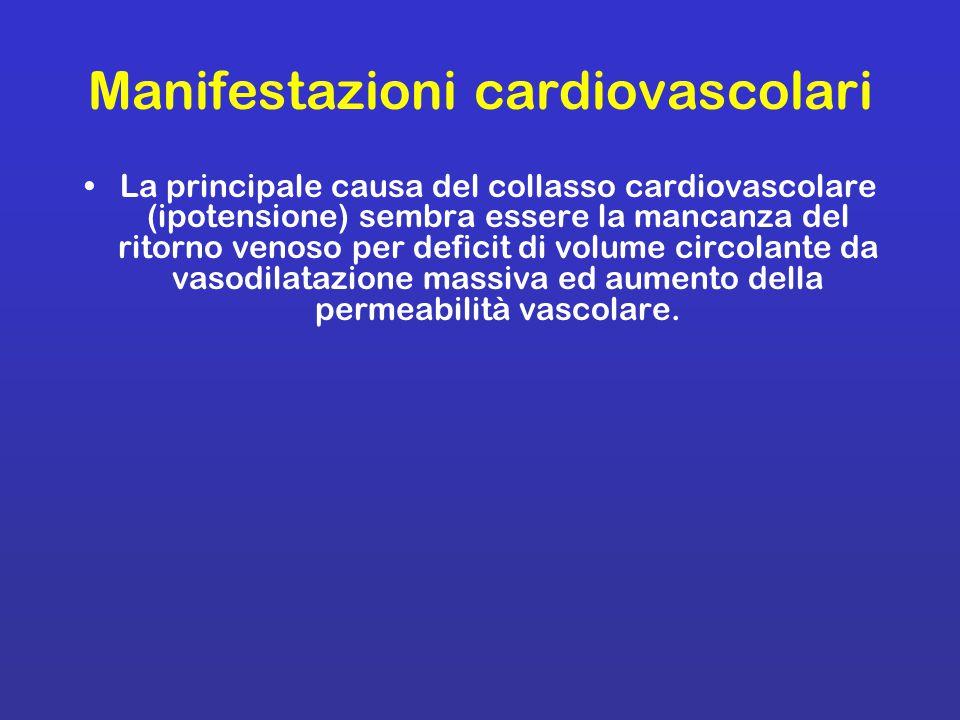 Manifestazioni cardiovascolari