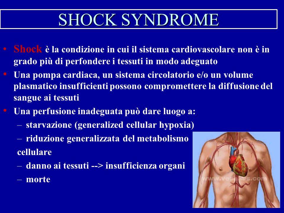 SHOCK SYNDROME Shock è la condizione in cui il sistema cardiovascolare non è in grado più di perfondere i tessuti in modo adeguato.
