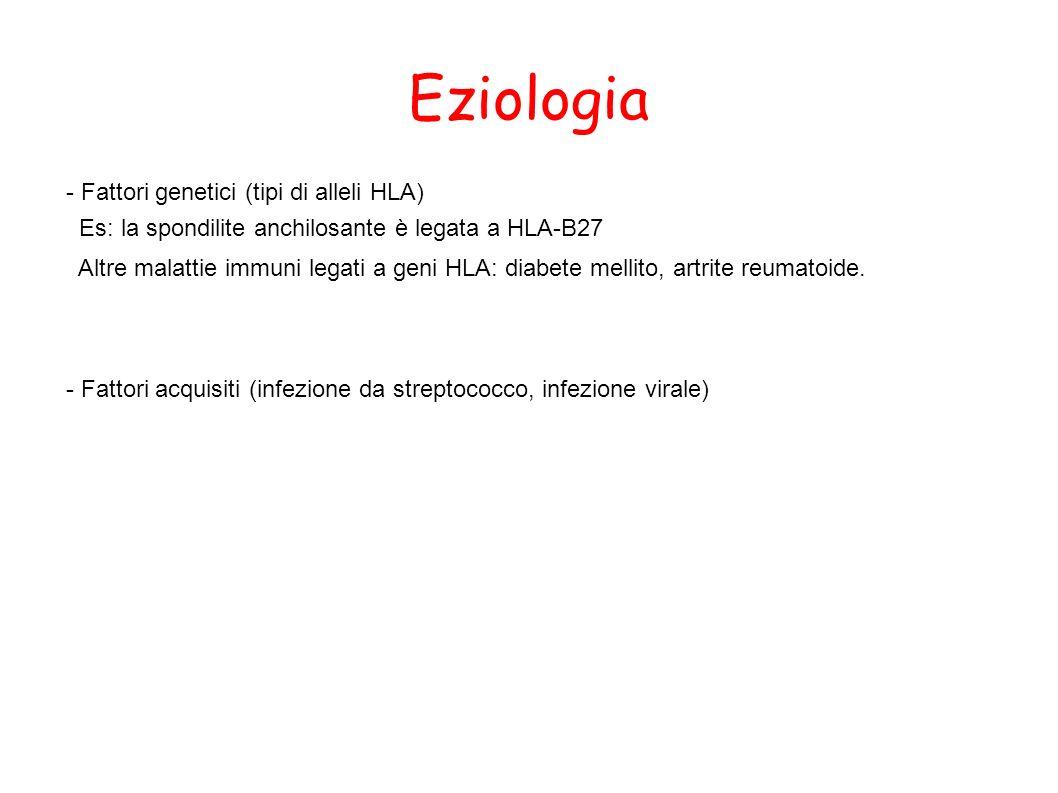 Eziologia - Fattori genetici (tipi di alleli HLA)