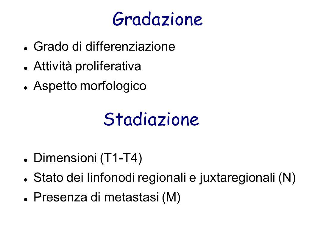 Gradazione Stadiazione Grado di differenziazione