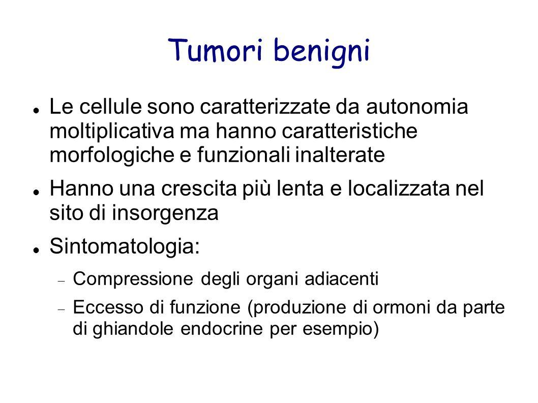 Tumori benigni Le cellule sono caratterizzate da autonomia moltiplicativa ma hanno caratteristiche morfologiche e funzionali inalterate.