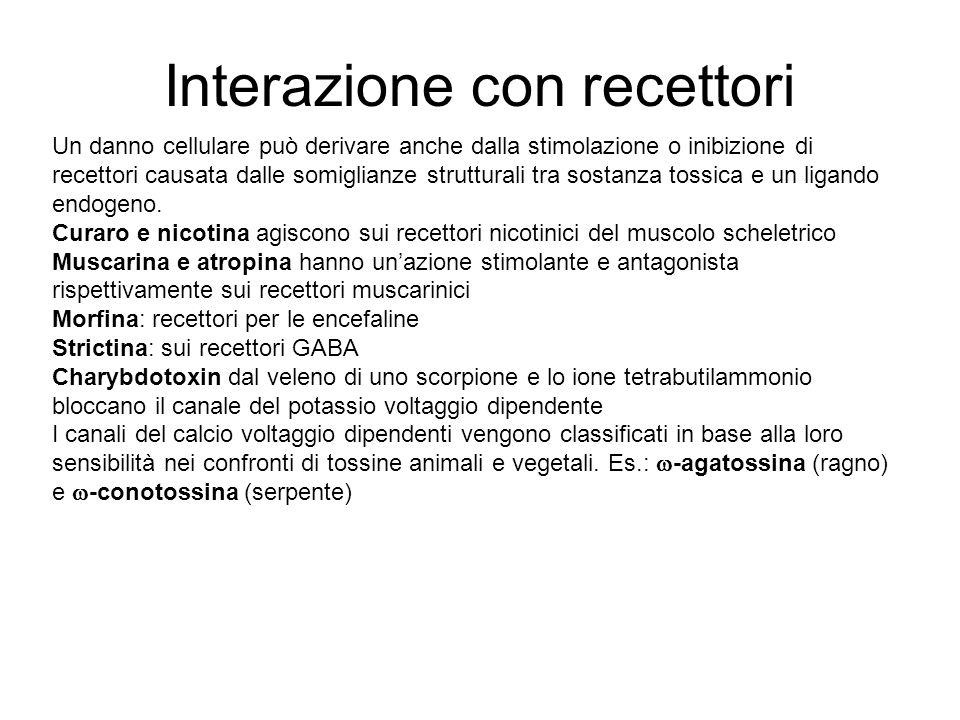 Interazione con recettori