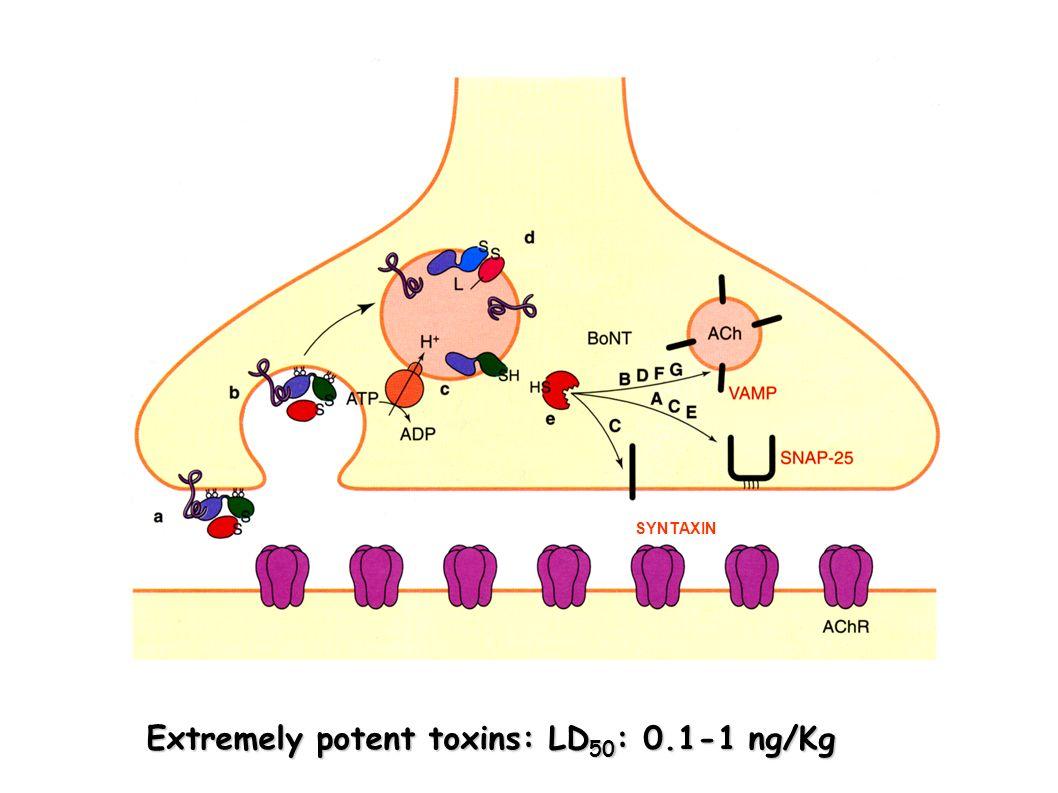 Extremely potent toxins: LD50: 0.1-1 ng/Kg