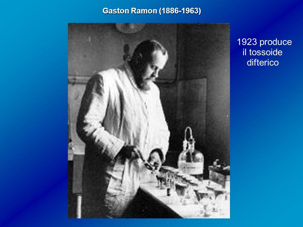 Gaston Ramon (1886-1963) 1923 produce il tossoide difterico