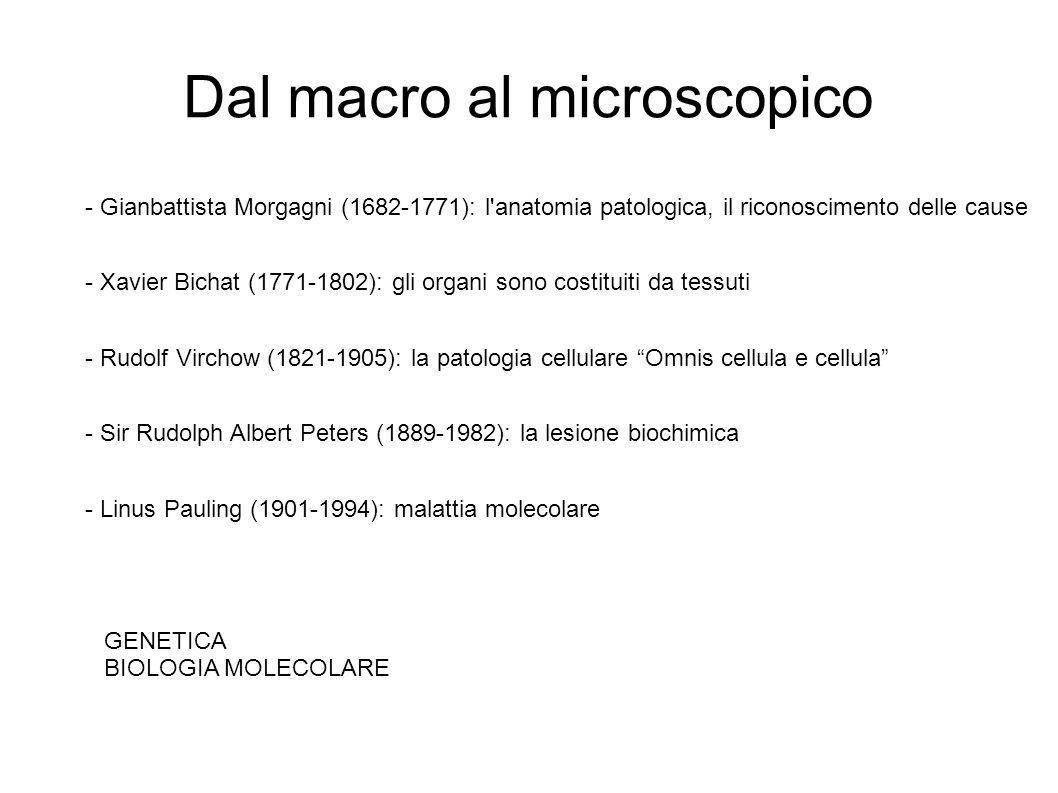 Dal macro al microscopico