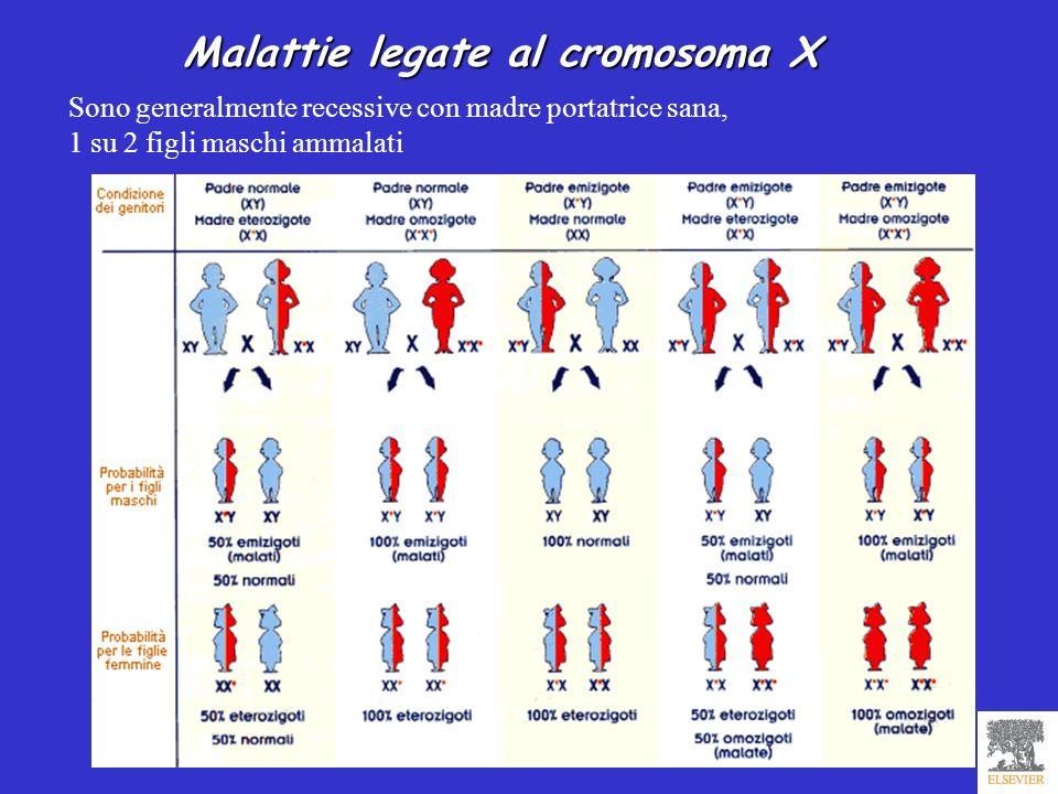 Malattie legate al cromosoma X