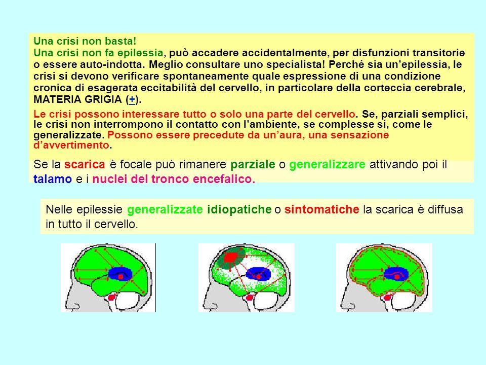 Una crisi non basta! Una crisi non fa epilessia, può accadere accidentalmente, per disfunzioni transitorie o essere auto-indotta. Meglio consultare uno specialista! Perché sia un'epilessia, le crisi si devono verificare spontaneamente quale espressione di una condizione cronica di esagerata eccitabilità del cervello, in particolare della corteccia cerebrale, MATERIA GRIGIA (+).