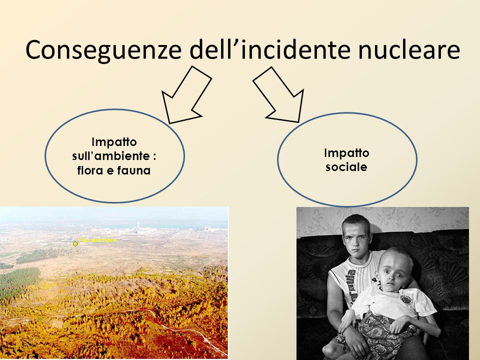 Conseguenze dell'incidente nucleare