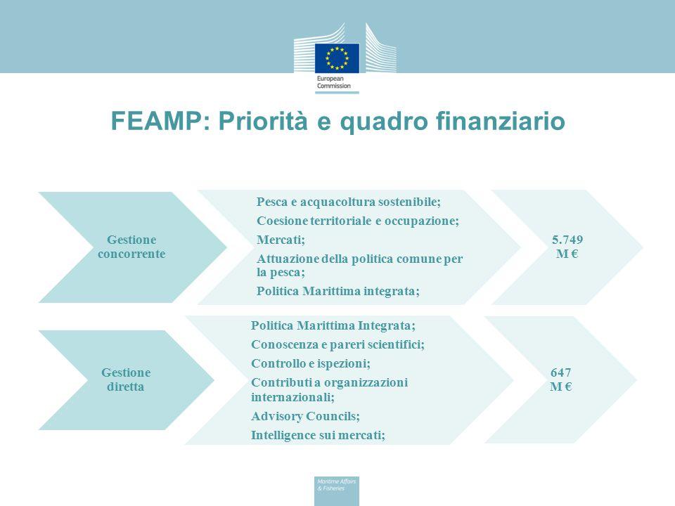FEAMP: Priorità e quadro finanziario