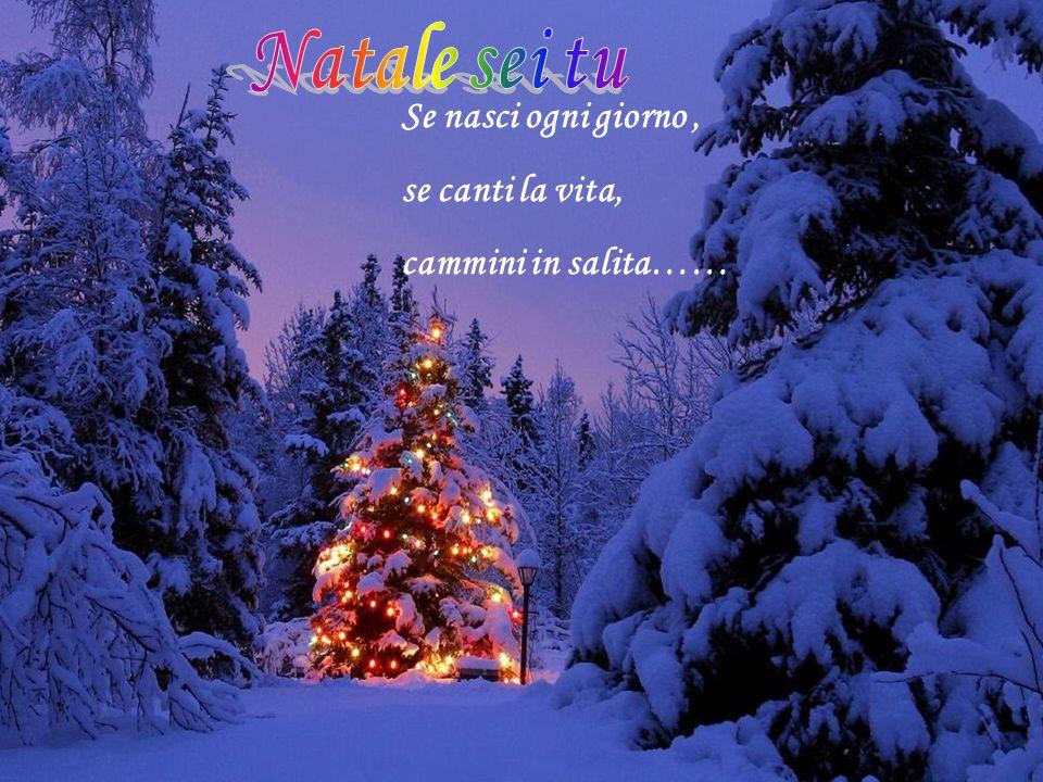 Natale sei tu Se nasci ogni giorno , se canti la vita, cammini in salita……