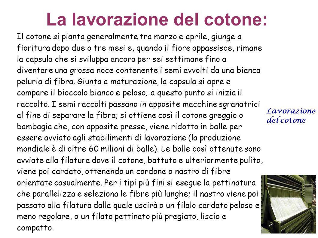 La lavorazione del cotone: