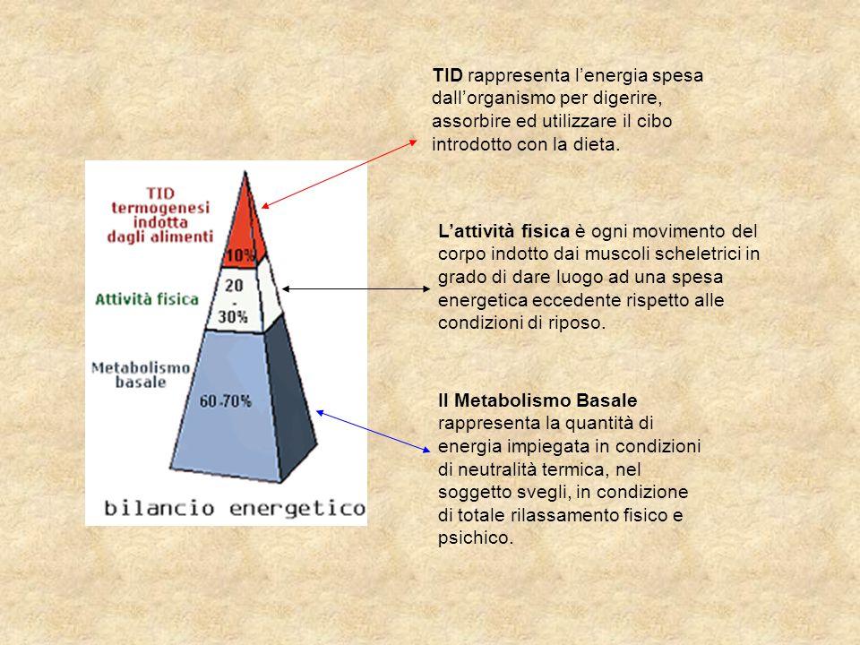 TID rappresenta l'energia spesa dall'organismo per digerire, assorbire ed utilizzare il cibo introdotto con la dieta.