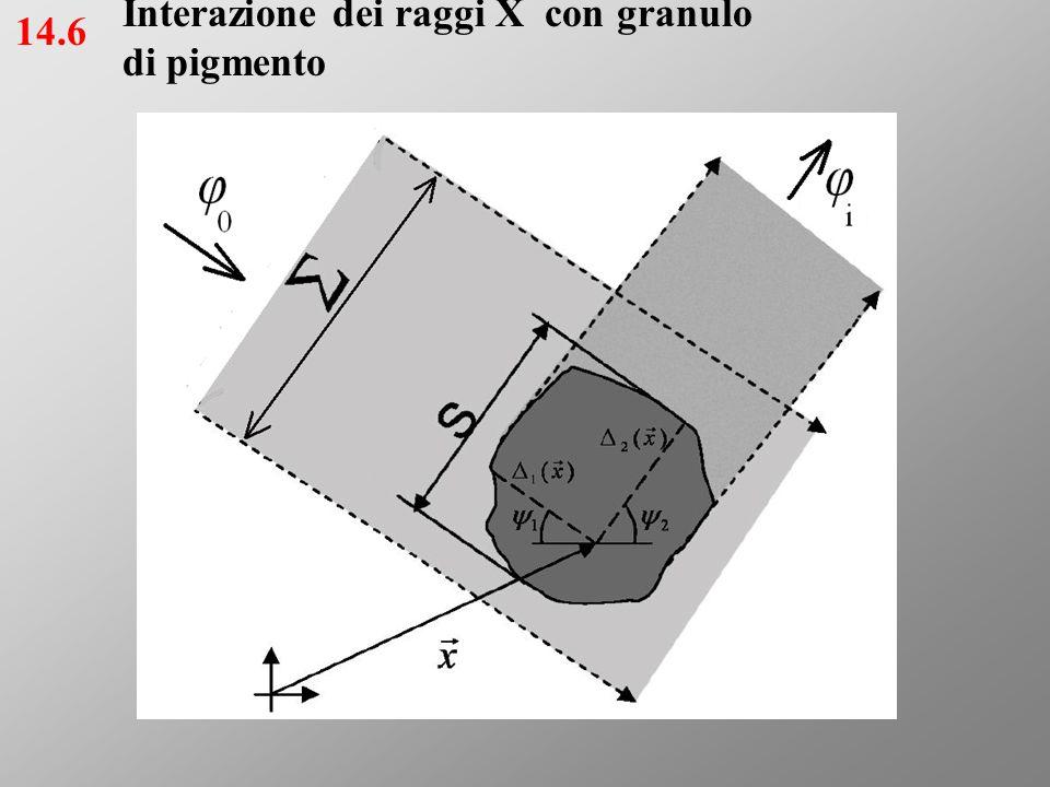 Interazione dei raggi X con granulo di pigmento