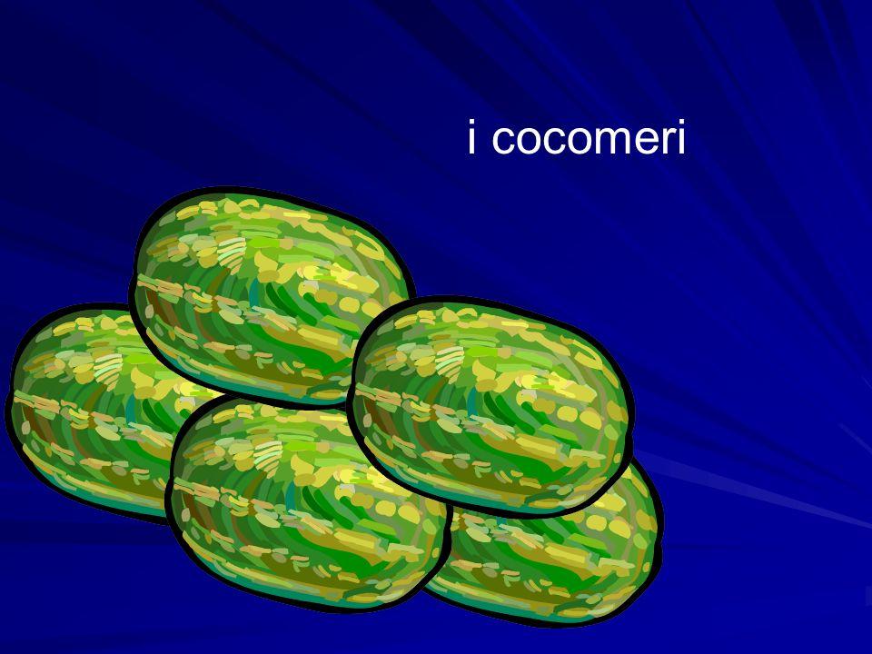 i cocomeri