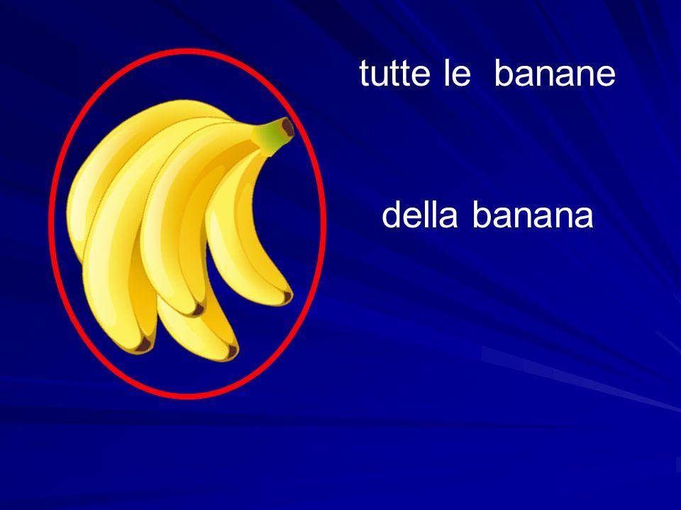 tutte le banane della banana