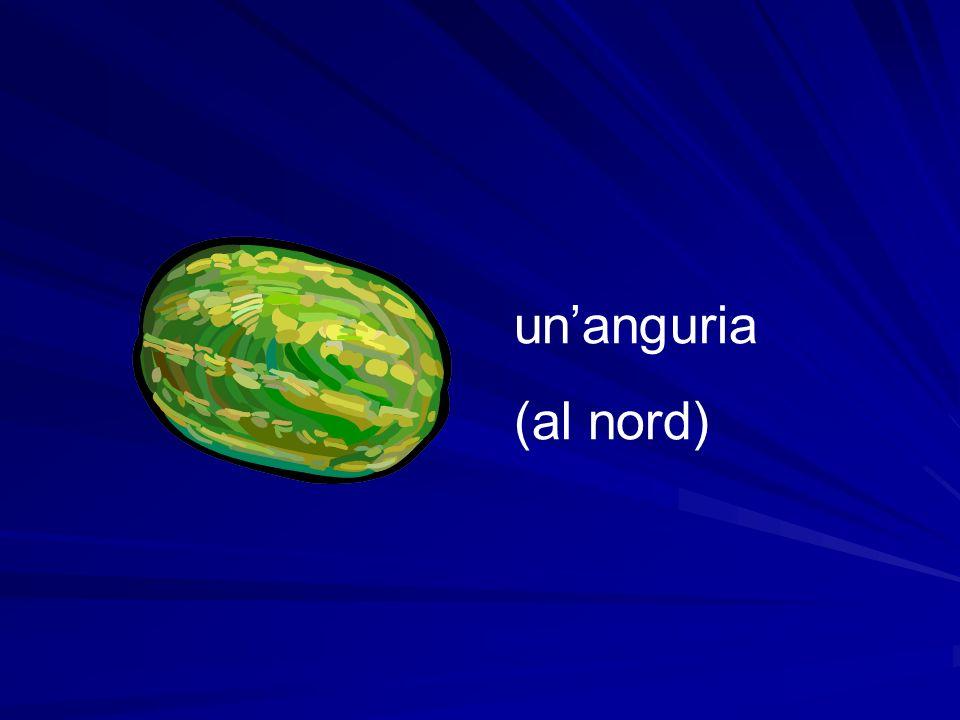 un'anguria (al nord)