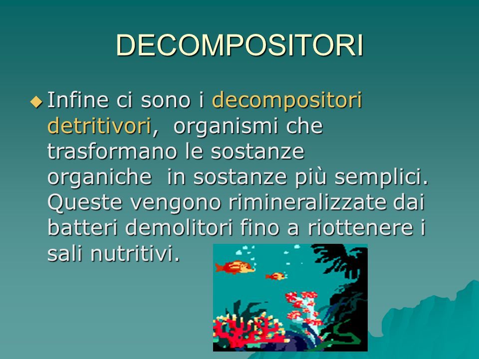 DECOMPOSITORI